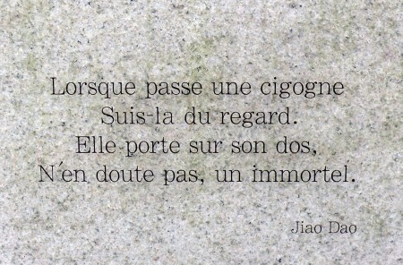CITATIONS CHINOISES