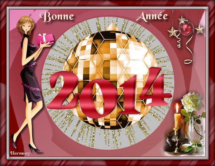 Bonne Année 2014.1