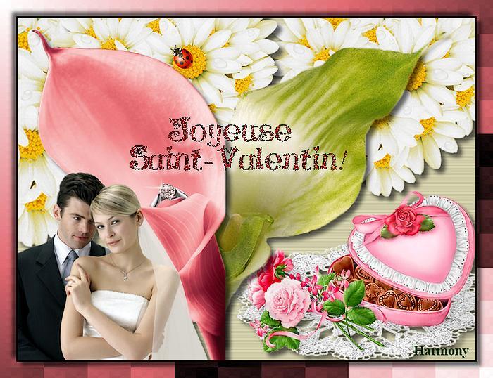 St Valentin 2014-4