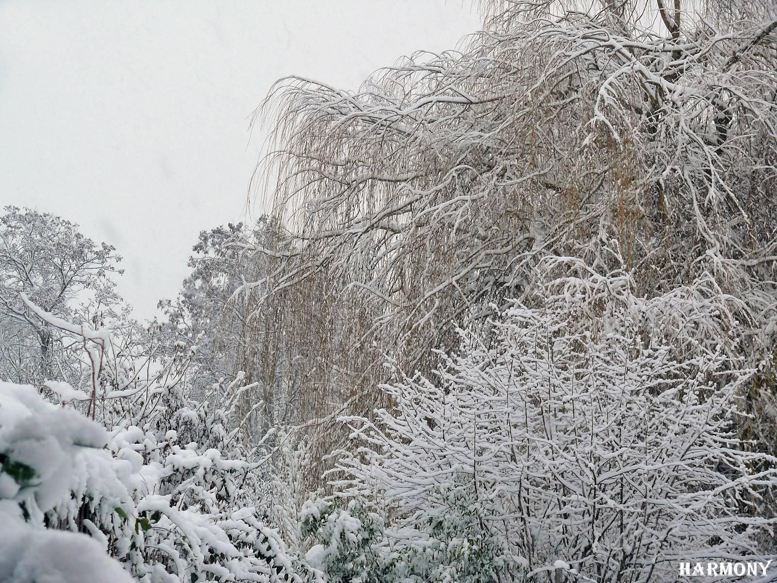 neige-11